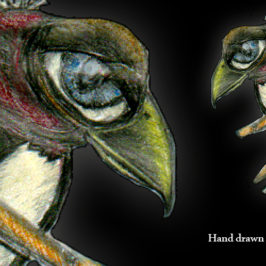 ARTWORK: Chicken Art
