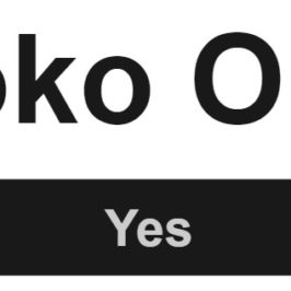 OVERVIEW Yoko Ono
