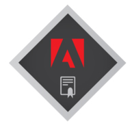 AWARD Adobe Teacher Trainer