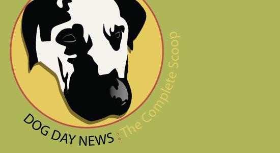 Logo Design Asheville by Iris Guy Gary Crossey