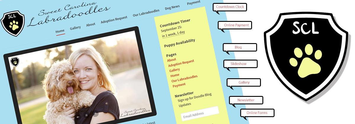 Asheville Web Site Design