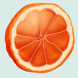 ARTWORK: Illustration – Fruit