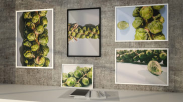 Photography Brussels Sprouts